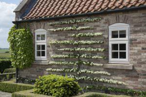 Sternfenster Approved Installers UK